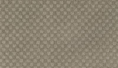 ProductVariant swatch small for Noveaux Taupe flooring product