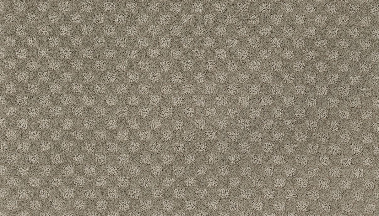 Enduring Attraction Noveaux Taupe 509