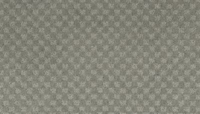 ProductVariant swatch small for Coastal Fog flooring product