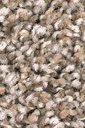 Mohawk Trailblazer - Poised Taupe Carpet