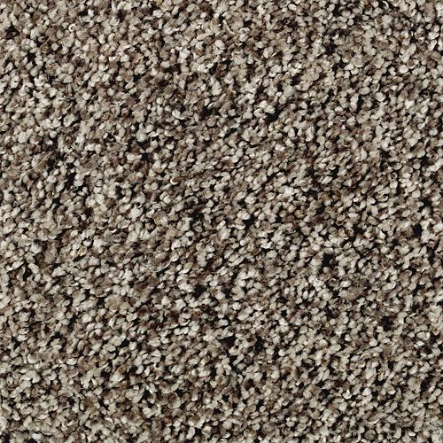 Mohawk Industries True Clarity Cabin Life Carpet