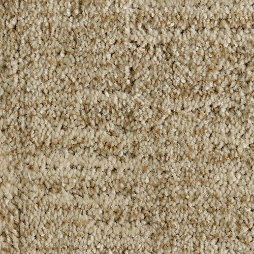 Mohawk Industries Random Nature Organic Carpet Central
