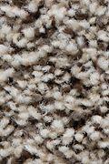 Mohawk Artistic Retreat - Antique Ice Carpet
