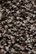 Mohawk Artistic Retreat - Imperial Brown Carpet