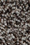 Mohawk Artistic Retreat - Hawthorn Carpet
