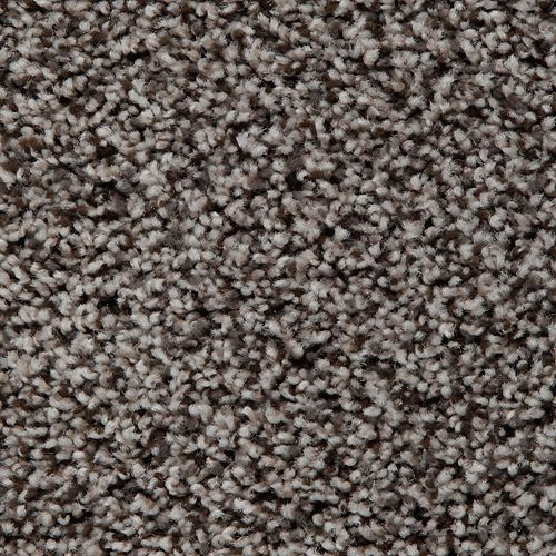 Mohawk Industries Artistic Retreat Amazon Star Carpet