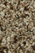 Mohawk Impressive II - Taupe Whisper Carpet
