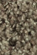 Mohawk Natural Structure I - Birchwood Carpet