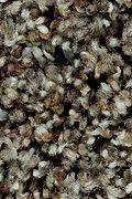 Mohawk Natural Structure II - Sparrow Carpet