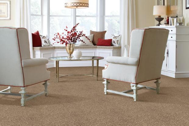 Enticing Allure Blonde Oak 563