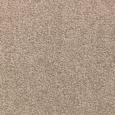 ProductVariant swatch small for Walnut Frost flooring product