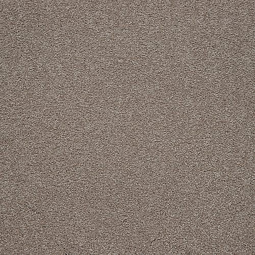 ProductVariant swatch large for Walnut Frost flooring product