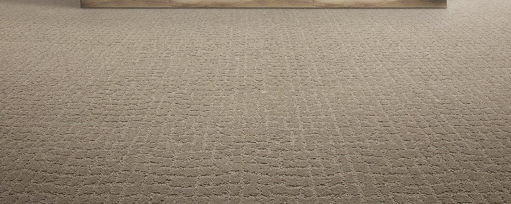 Room Scene of Luxurious Debut - Carpet by Mohawk Flooring