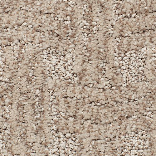 Intertwined Desert Accents 861