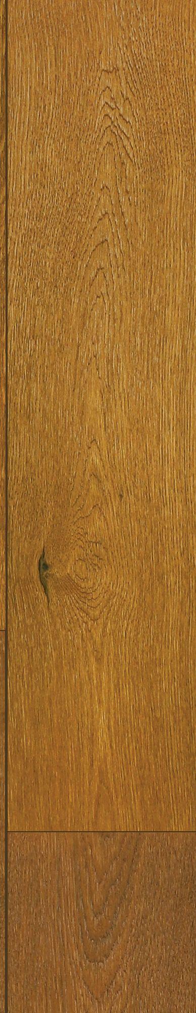 Topsail Oak