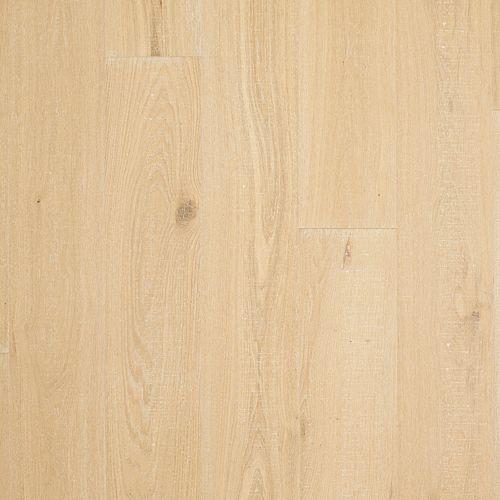 Sundial Oak