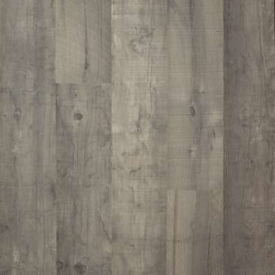 Ash Maple