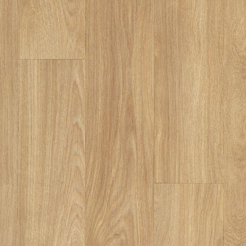 Dodford 20 Dry Back Suede Oak 450