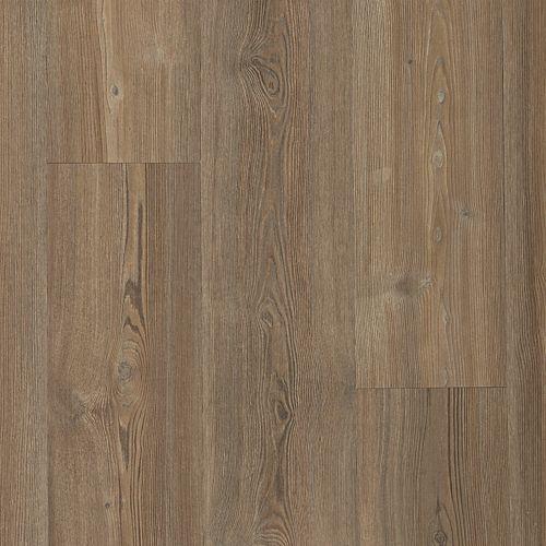 Mochocino Pine