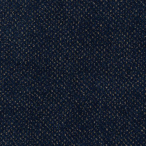 Jazz Pointe Powder Indigo 593