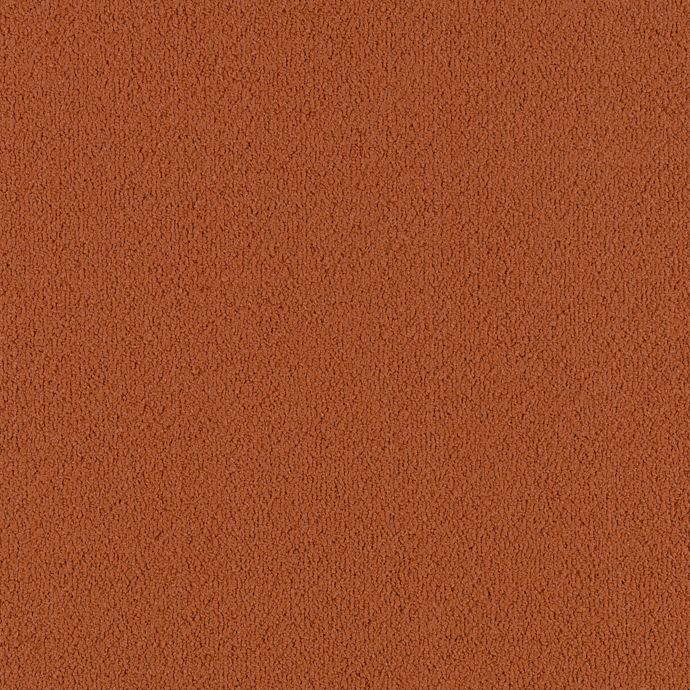Color Pop Cajun Spice 258