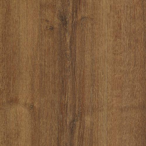 Woodlands Grandfather Oak 518