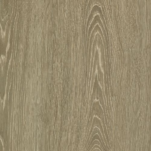 Woodlands Silver Shadow 893