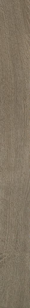 Medieval Gray