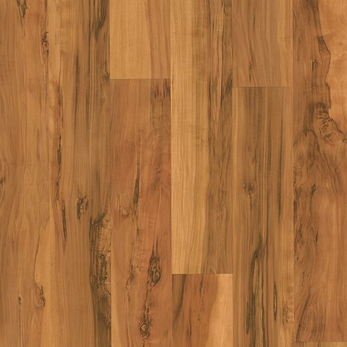 Cornwall Caramel Spalted Maple Strip 91