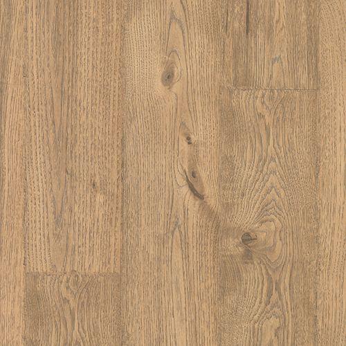 Sandbank Oak