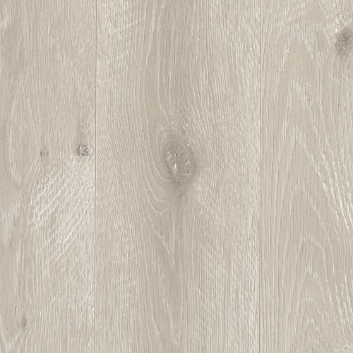 Abbie Plank Grey Shadow 1