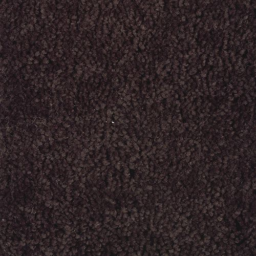 Carpet AmericanDream 1P81-894 CoffeeBean