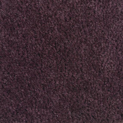 Classic Cadence Plum Purple 484