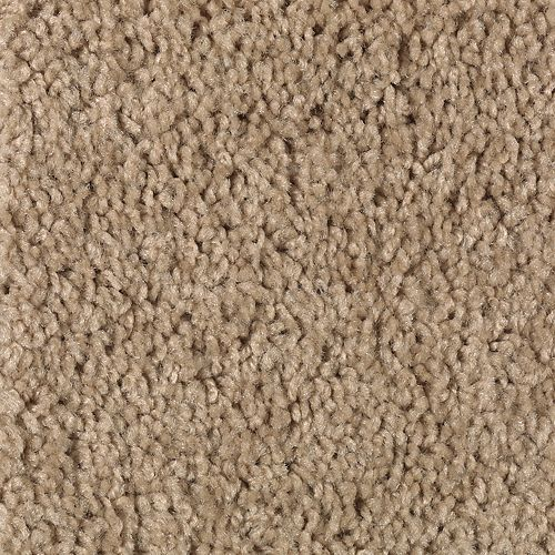 Carpet Splurge Tan Tones 833 main image