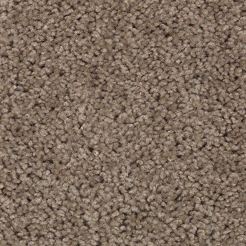 Carpet Splurge Weathered Taupe 859 main image