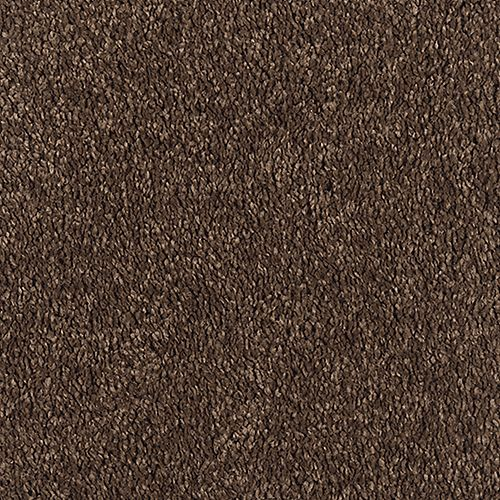 Gentle Essence Burnished Brown 505
