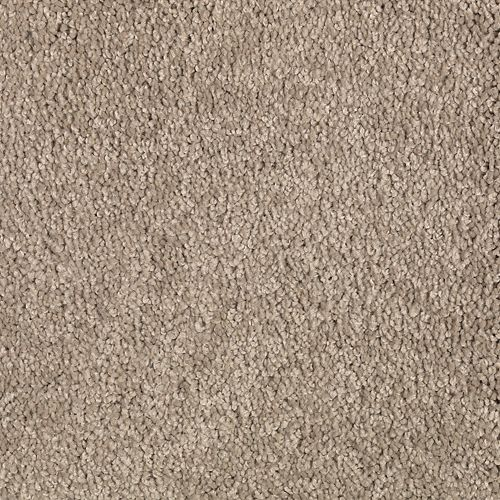 Soothing Effect Sequoyah Dusk 526