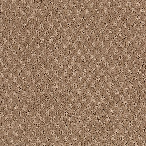 Headland Pass Cedar Beige 515