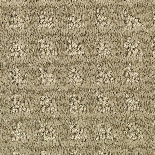 Brookshire Olive Shade 646
