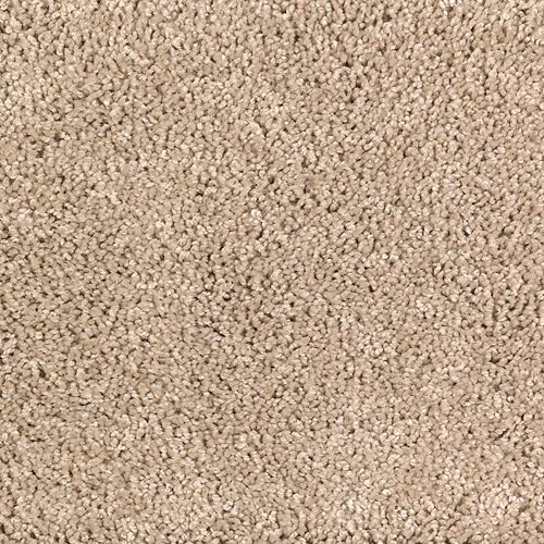 Romantic Charm Solid Whole Grain Solid 508