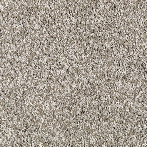 Hampton Isle Taupe Treasure 503