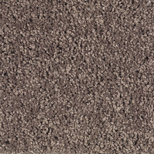 Soft Flair Solid Velvet Brown Solid 879