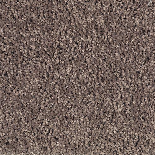 Soft Dream Solid Velvet Brown Solid 879