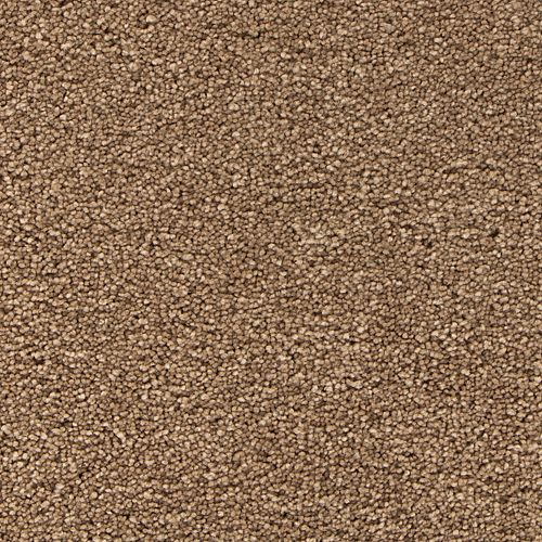 Pacific Dunes I Velvet Brown 823