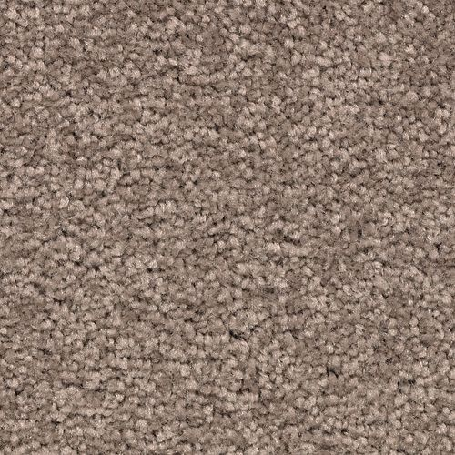 Lively Intuition Mesquite Chip 838