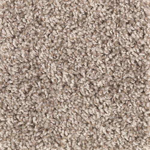 Carpet Achiever 2E47-727 MushroomCap