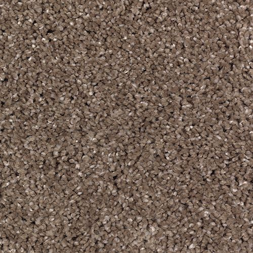 Calming Vision Tweed 509