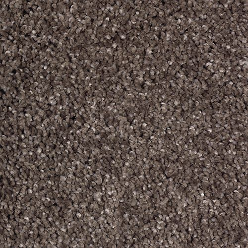 Calming Vision Rich Walnut 503