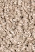 Mohawk Top 40 - Biscotti Carpet