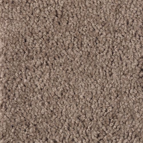 Soothing Design Dried Peat 858